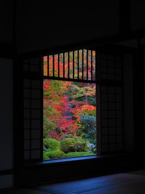 迷いの窓から見る紅葉