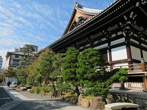 松と本堂と秋空