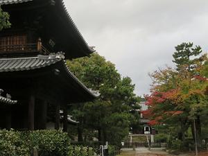 三門と紅葉