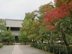 法堂と紅葉