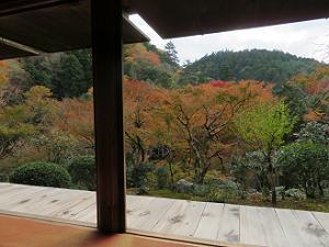 石水院から眺める紅葉