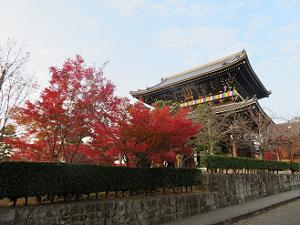 参道の紅葉と山門