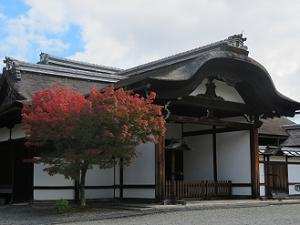 玄関と紅葉
