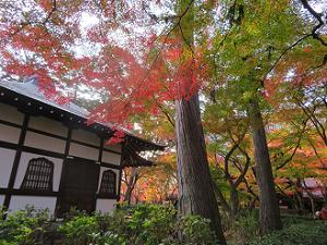 萬霊堂と紅葉