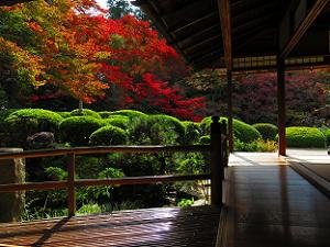 詩仙の間から見る紅葉