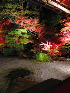 白砂と紅葉