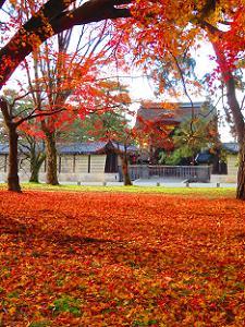 敷き紅葉と建春門