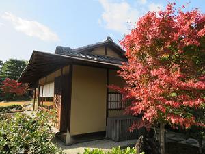 楽水軒と紅葉