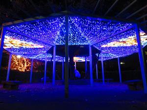 青く光るベンチの屋根