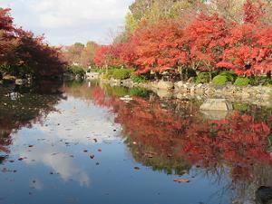 瓢箪池と紅葉