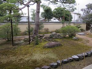 庭園の石組とコケ