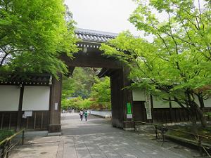 総門と新緑