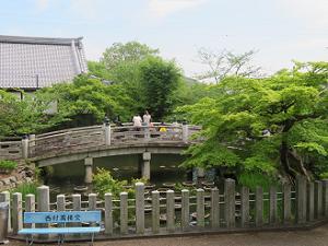 極楽橋と新緑
