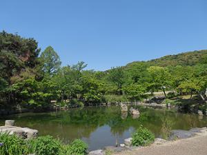 池と山と空