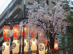 黒主山の桜