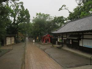 雨降る参道