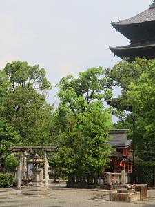 八島社と五重塔