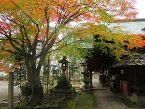本殿の横から見る紅葉