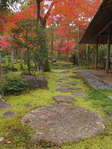 飛石と苔と紅葉