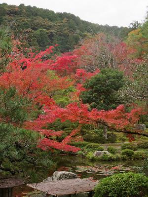 池と紅葉と大日山