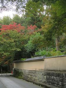 北側の参道から眺める紅葉