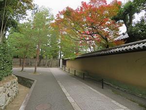 瑞軒院の塀際の紅葉