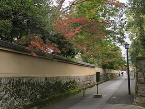 僧堂の塀際の紅葉