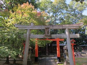 松尾社の鳥居と紅葉