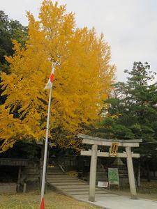 高良神社とイチョウ