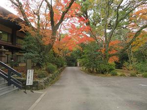 清峯殿近くの紅葉