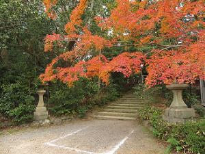 石段下の紅葉