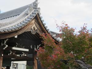 鐘楼の屋根と紅葉