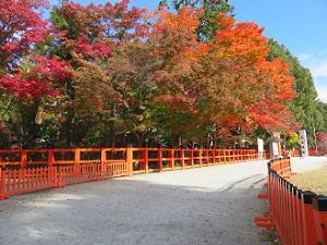 玉垣と紅葉