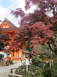 紅葉と楼門