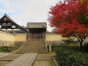 両足院の山門と紅葉