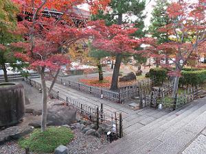 山門下の紅葉