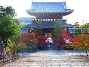 見下ろす山門と紅葉