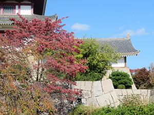 城壁と紅葉