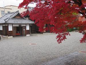 紅葉越しに見る休憩所