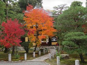 本堂前の紅葉