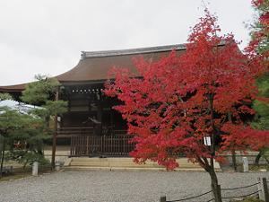 宸殿と紅葉