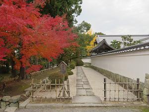 僧堂の塀と紅葉