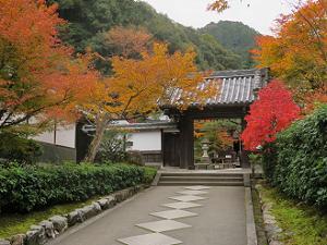 山門と紅葉