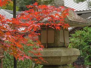 紅葉と灯籠