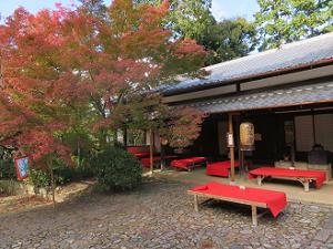 茶所と紅葉