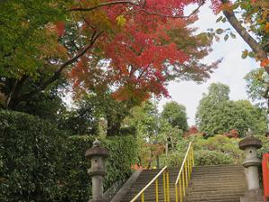 石段上の紅葉