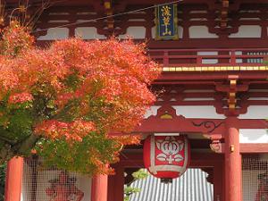 仁王門前の紅葉