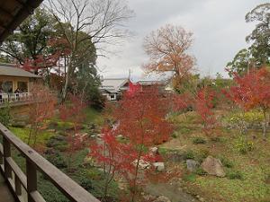八島ヶ池の紅葉
