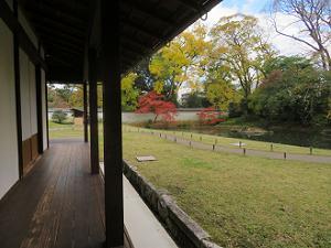 縁側から見る庭園