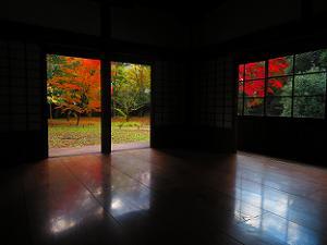 収納展示室から見る紅葉